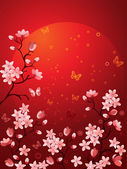 Sakura blossoms — Stock Vector