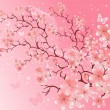 Stock Vector: Cherry blossom, vector illustration
