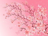 Cherry blossom, vector illustration — Stock Vector
