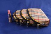 Bag for cosmetics — Stock Photo