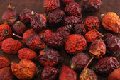 Dried berries of a dogrose — Stock Photo