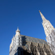 St Stephens Cathedral.Viena — Stock Photo