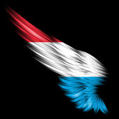 Abstract wing with Luxembourg flag on black background — Stock Photo