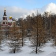 Russian orthodox church in winter park — Stock Photo