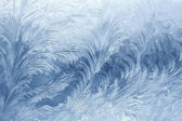 Vetro ghiacciato — Foto Stock