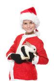 Pojken håller en jul kanin — Stockfoto