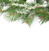 Marco de navidad con nieve — Foto de Stock