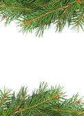 Kerstmis kader — Stockfoto