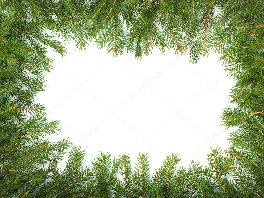 Christmas green framework isolated on white background — Stock Photo #4271495