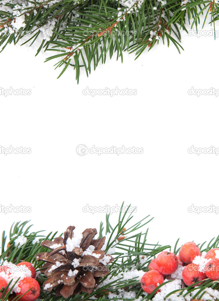 Christmas green  framework with snow  and holly berry  isolated on white background — Stock Photo #4424908