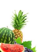 красочные здоровых свежих фруктов — Стоковое фото