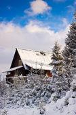 Alpine Hut. Snow covered Winter Scenery. — Stock Photo