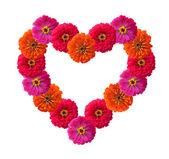 Tvaru srdce vyrobený z růže — Stock fotografie
