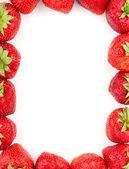 Strawberries frame — Stock Photo