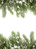 Christmas framework with snow isolated on white background — Stock Photo