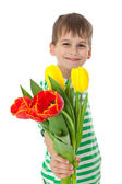 Young boy holding tulips — ストック写真