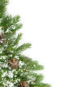 Rahmen für weihnachten mit schnee und kegeln — Stockfoto