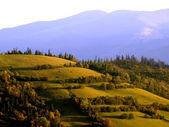 Ukrainian landscape. — Stock Photo