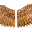 Wooden wings isolated on white background. - Stock Photo