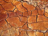 Superficie del terreno. — Foto Stock