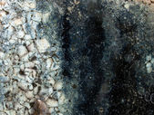 Abstract crackle surface — Stock Photo