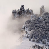 Snowy mountains with trees and fog. — Stock Photo