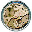 Stock Photo: Watchwork macro