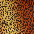Stock Photo: Leopard fur as background