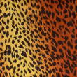 Leopard fur as background — Stock Photo #4081252