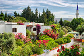 Landscape with houses and flowers — Stock Photo