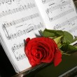Stock Photo: Rose on piano