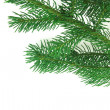 Christmas branch fir-tree — Stock Photo #5011102