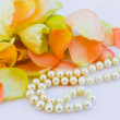 Roses petals and pearl - Stock Photo
