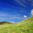 Meadow and cloudy sky — Stock Photo