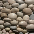 Stock Photo: Pebble close-up