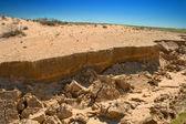 Landscape desert — Stock Photo