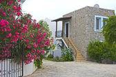House in Bodrum (Turkey) — Stock Photo