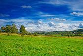 Krajina a zamračená obloha — Stock fotografie