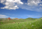 Meadow and cloudy sky — Stok fotoğraf