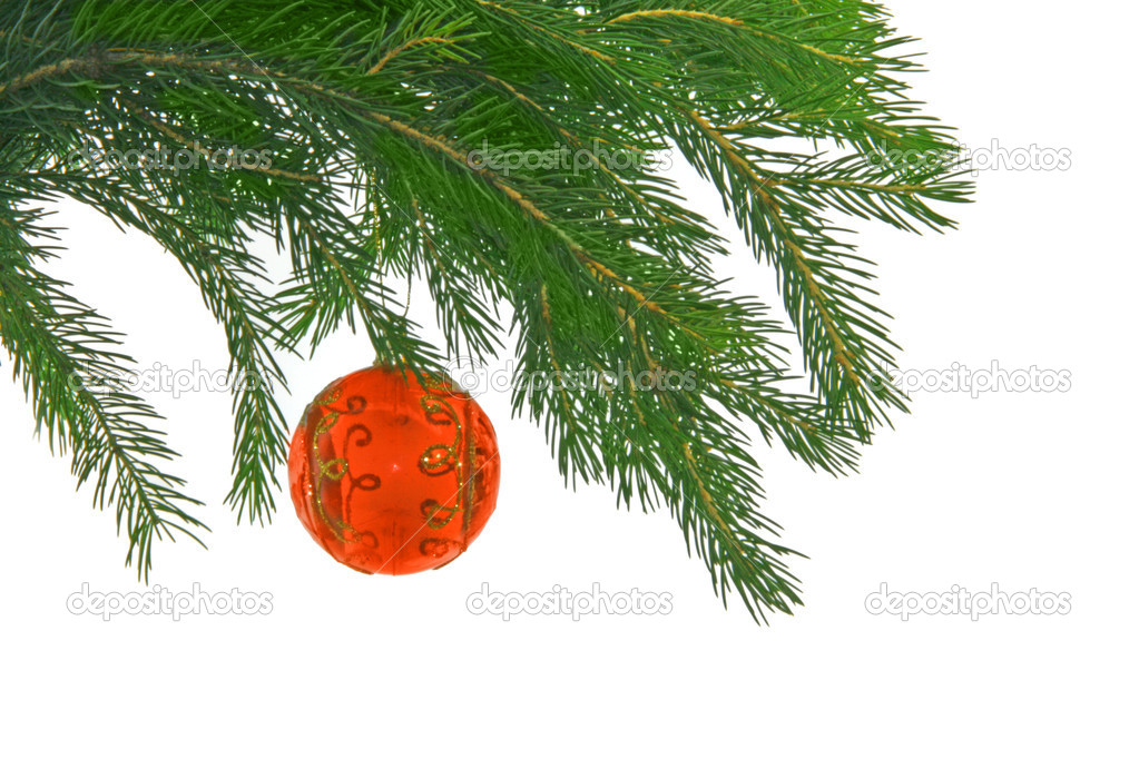 Christmas fur tree with sphere — Stock Photo #5012560