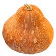 Pumpkin isolated — Stock Photo #5376414