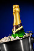 Champagne bottle in ice — Stock Photo