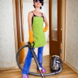 Housewife — Foto Stock #4241694