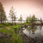 Beautiful northern landscape on the lake — Stock Photo #5240332