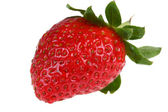 Berries of strawberry — Stock Photo