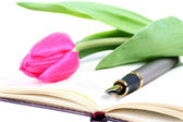 Pink tulip lies on an open writing-book — Stock Photo