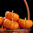 Pumpkins — Stock Photo #3975648