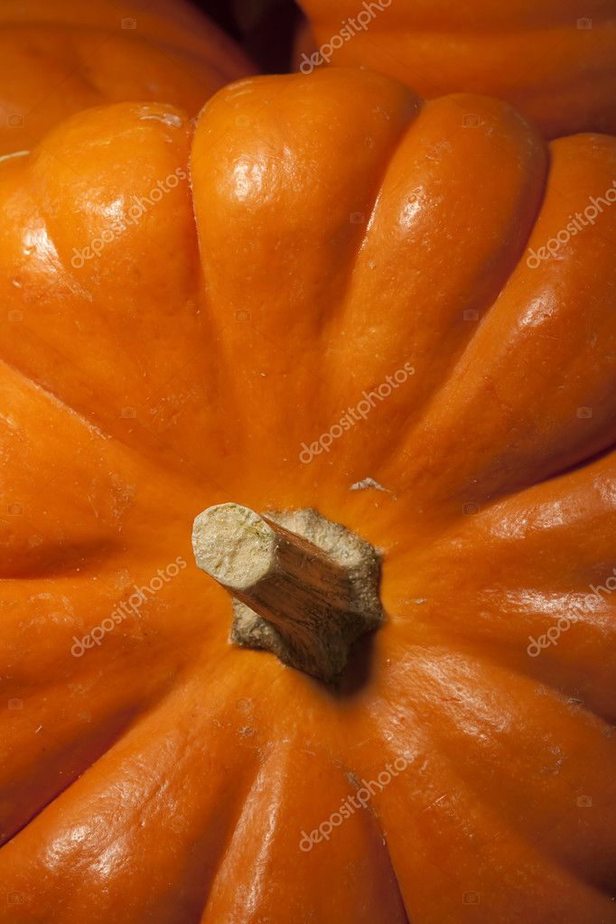 Small orange pumpkins symbolising autumn holidays and used in decorative works. — Stock Photo #4085880
