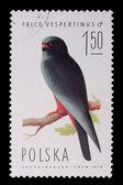 Poland - CIRCA 1974: A stamp - Falco Vespertinus — Foto Stock