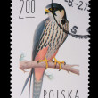 Poland - CIRCA 1974: A stamp - Falco Subbuteo - Stock Photo
